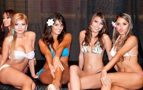 Gorgeous ladies